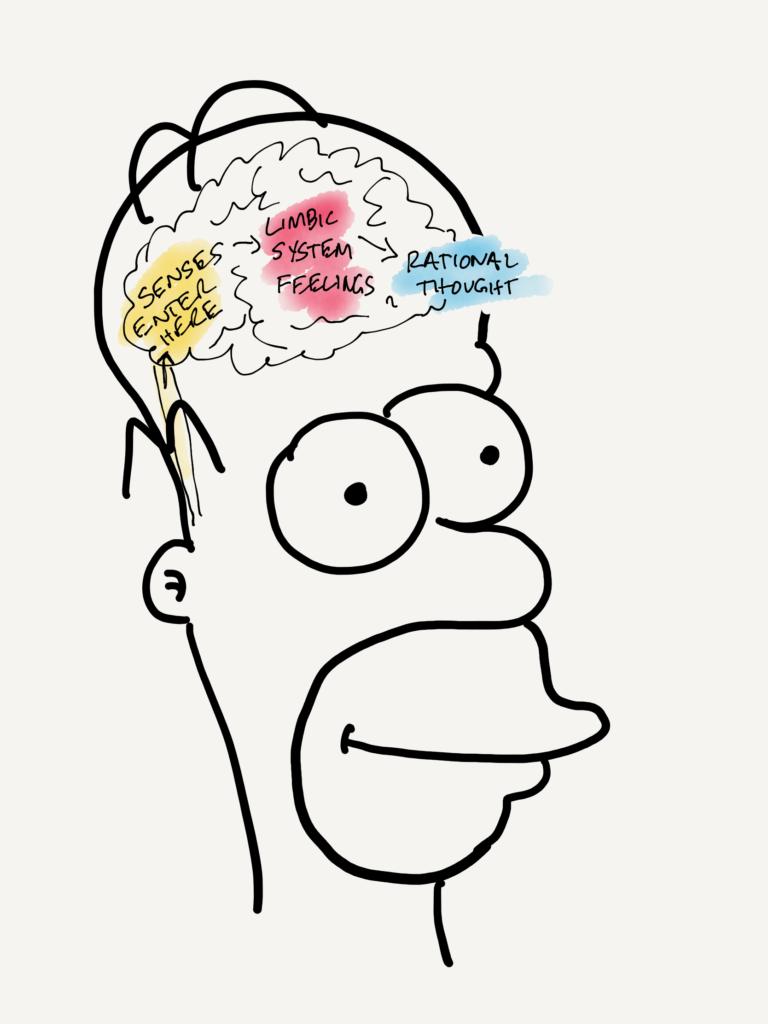 Homer Emotional Intelligence